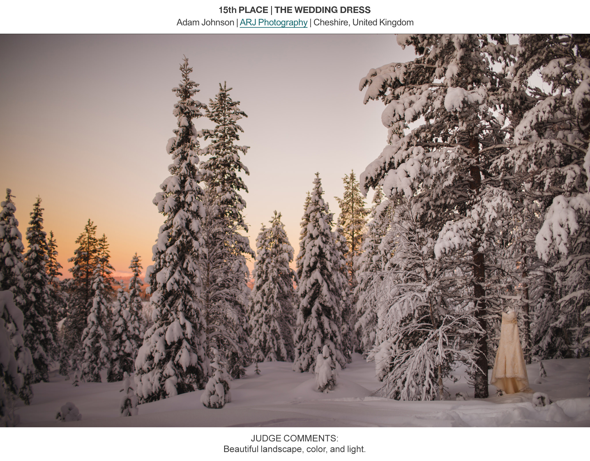 Award Winning Wedding Photography - ISPWP Winter 2014 Contest - ARJ Photography