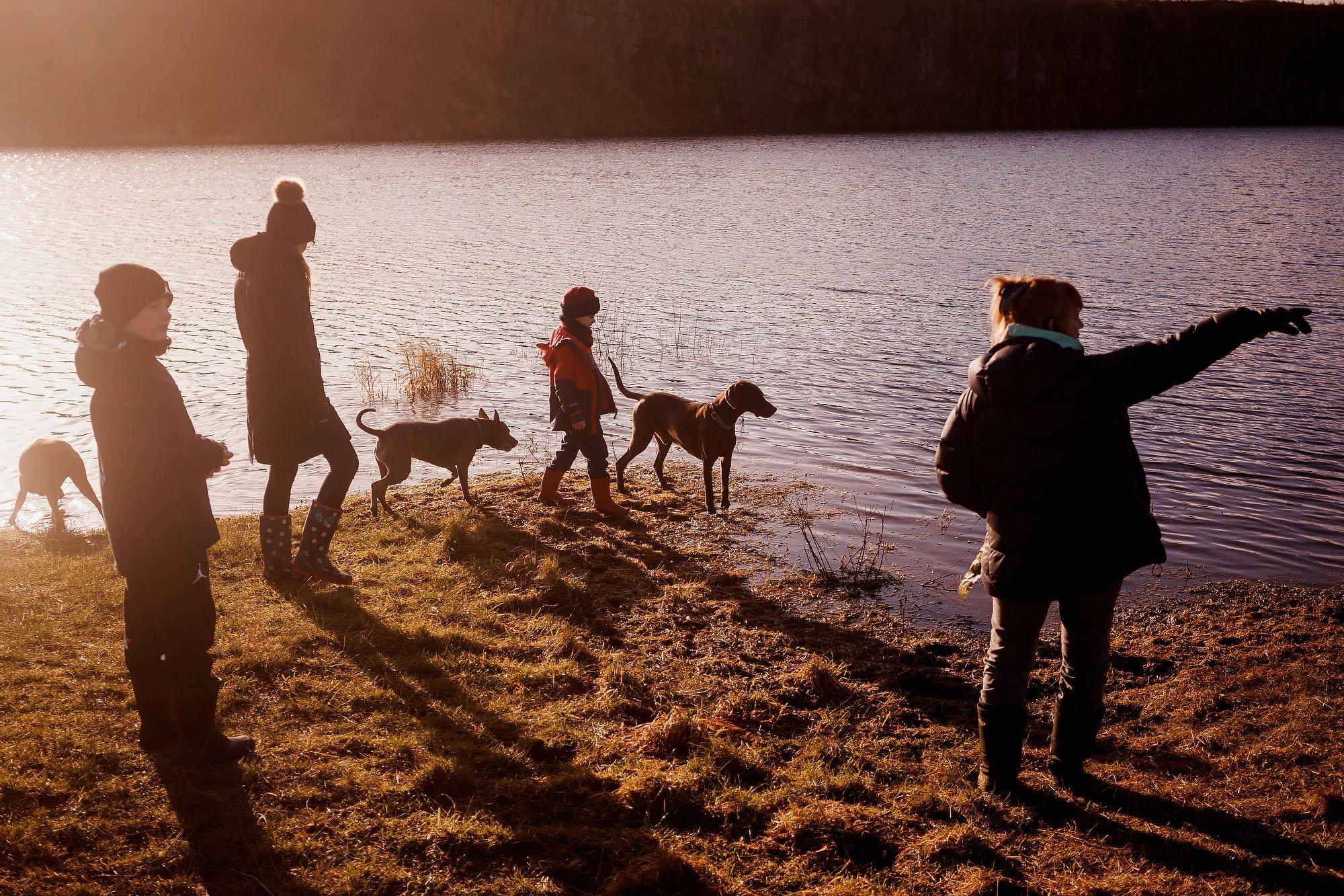 Family photos 2020 - cheshire wedding photographers arj photography